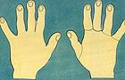 Juego de encaje para el conocimiento de las manos
