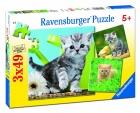 Puzzle de gatito curioso. 3 puzzles de 49 piezas