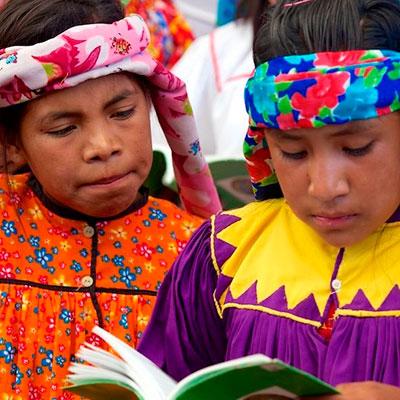 Alfabetizar en lengua indígena. Desafíos y problemáticas actuales