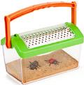 La casa de los insectos (Bug house)