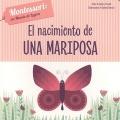 El nacimiento de una mariposa. Montessori