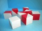 Cubos de Kohs. 9 Cubos de plástico blanco y rojos.