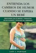 Entienda los cambios de humor cuando se espera un bebé. Emociones, salud mental y bienestar antes, durante y después del embarazo.