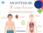 Montessori. El cuerpo humano