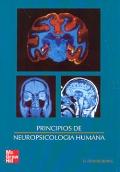 Principios de neuropsicología humana.