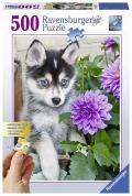 Puzle lindo husky 500 piezas