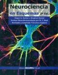 Neurociencia en esquemas.