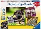 Puzzle de perros y gatos. 3 puzzles de 49 piezas