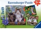 Gatitos atigrados. 3 puzzles de 49 piezas cada uno