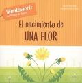 El nacimiento de una flor Montessori: un mundo de logros